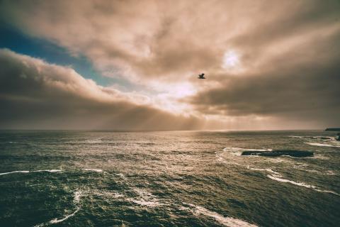 image of sun on ocean